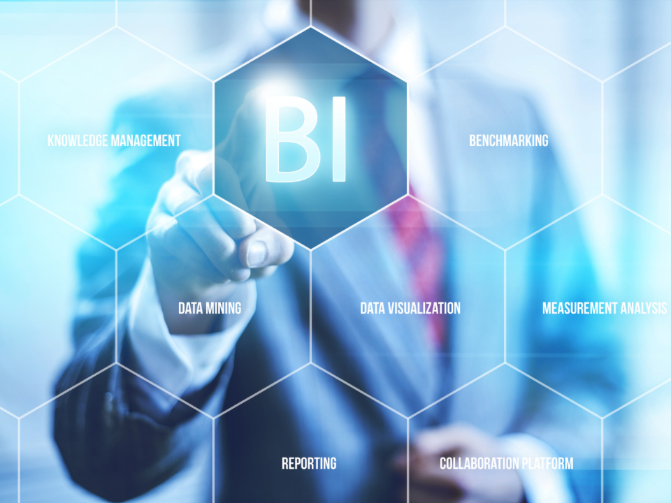 Picture of BI & Risk Analysis